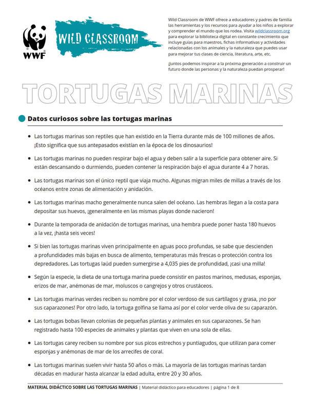 Herramientas Completas sobre las Tortugas Marinas Brochure