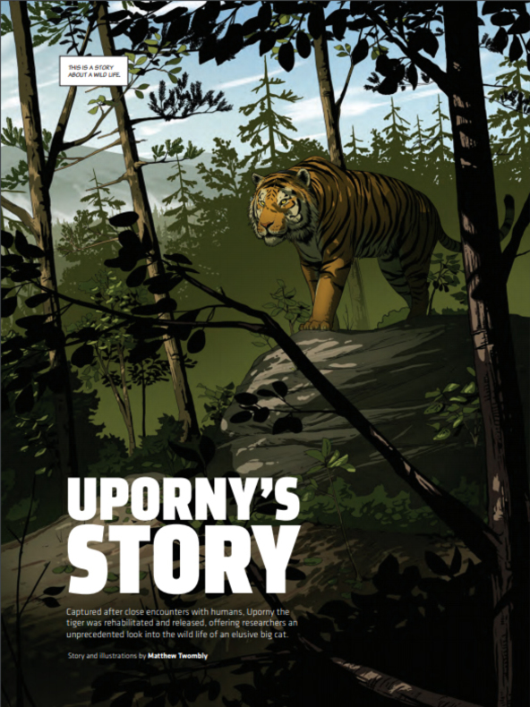 Uporny's Story Brochure