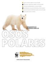 Herramientas Completas sobre los Osos Polares Brochure