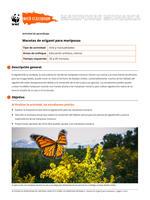 Macetas de origami para mariposas Brochure