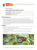 La gran migración de las mariposas monarca Brochure