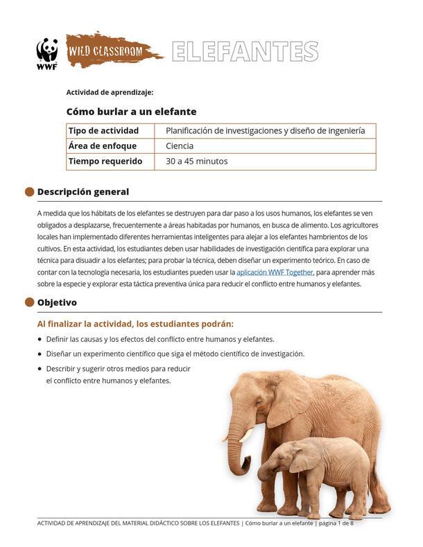Cómo burlar a un elefante Brochure