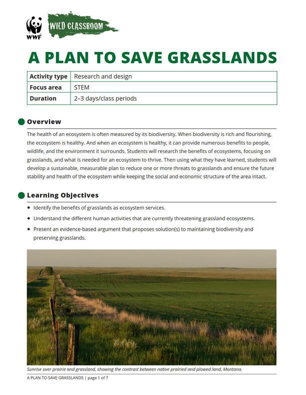 A Plan to Save Grasslands Brochure