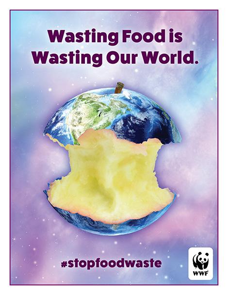 6-8 Poster Brochure