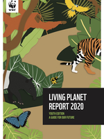 LPR Youth Edition 2020 Report Brochure