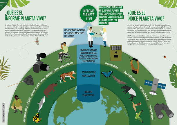 Informe Planeta Vivo 2020: Edición Juvenil Brochure