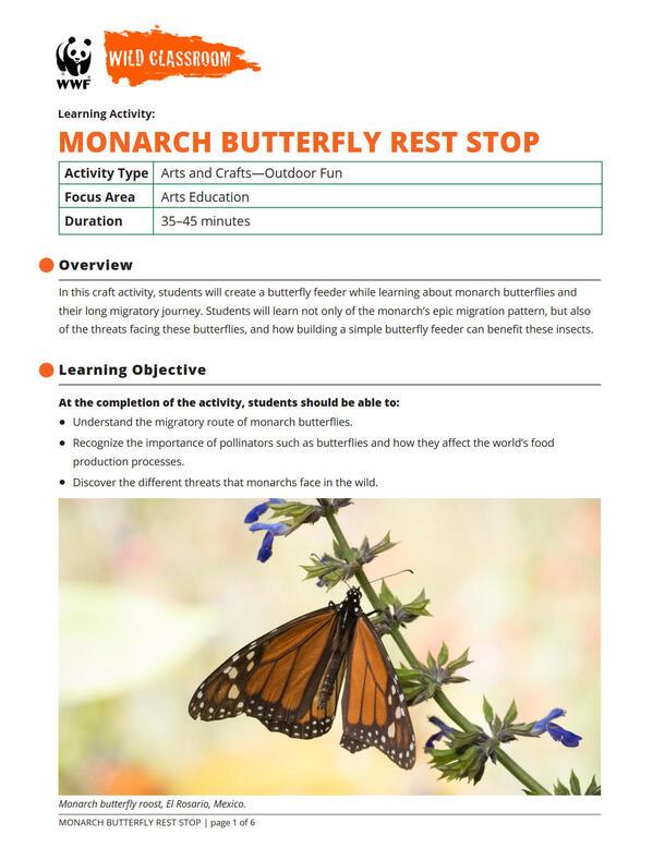 Monarch Butterfly Rest Stop Brochure