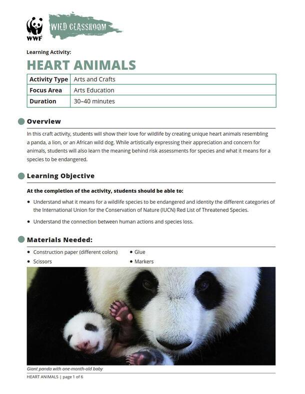 Heart Animals Brochure