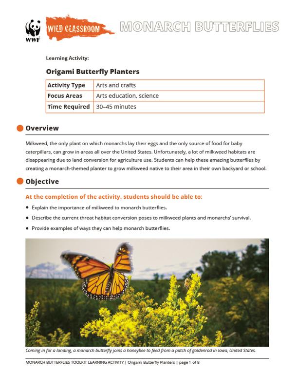 Origami Butterfly Feeders Brochure