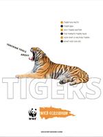 Educator's Resource Guide Brochure