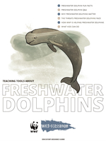 Full Freshwater Dolphin Toolkit Brochure