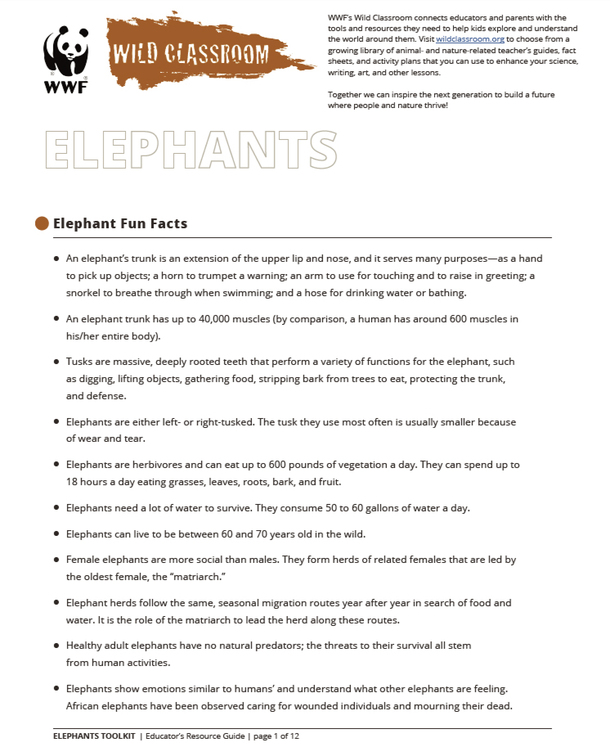 Full Elephant Toolkit Brochure