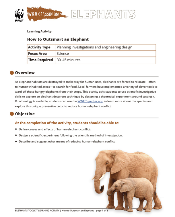 How to Outsmart an Elephant Brochure