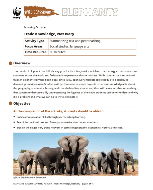 Trade Knowledge, Not Ivory Brochure