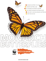 Full Monarch Butterfly Toolkit Brochure