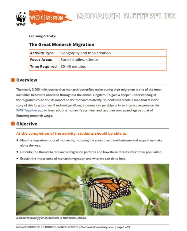 The Great Monarch Migration Brochure