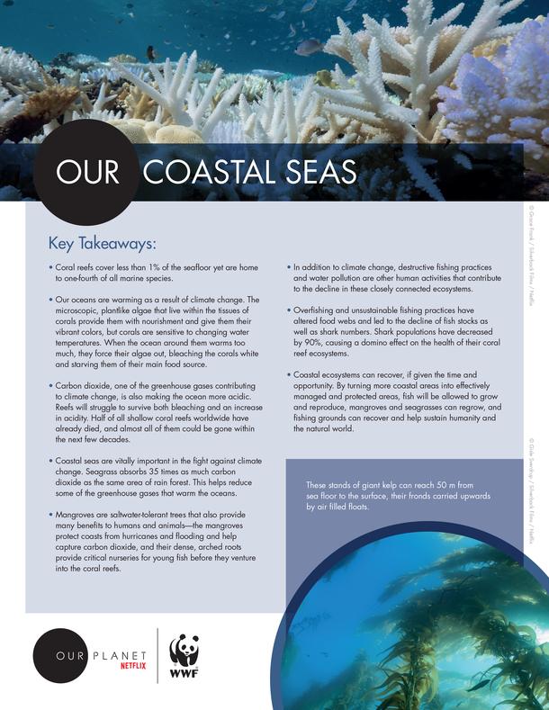 Our Coastal Seas Brochure