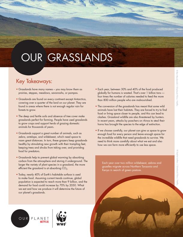 From Deserts to Grasslands Brochure