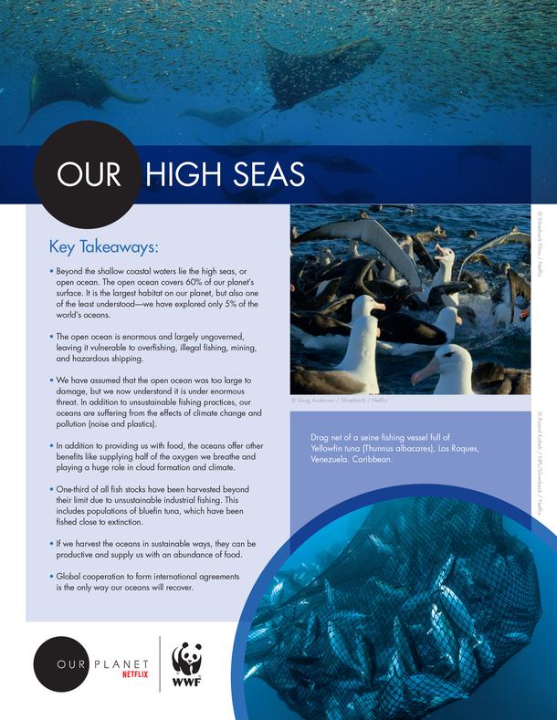 Our High Seas Brochure
