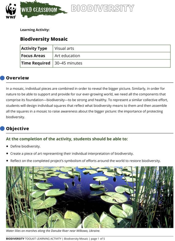 Biodiversity Mosaic Brochure
