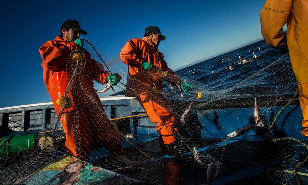 fishermen on a boat