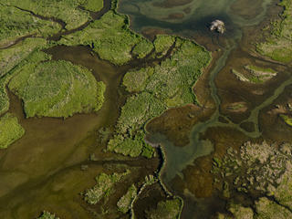 Aerial shot of Bristol Bay