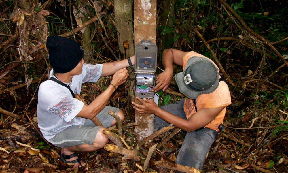 WWF staff installing a camera trap