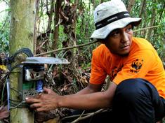 Installing camera trap2 7.30.2012 camera traps