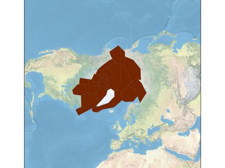 polar bear range map