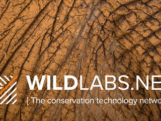 WILDLABS TWITTER WHITE