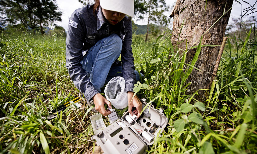 WWF staff set up camera trap