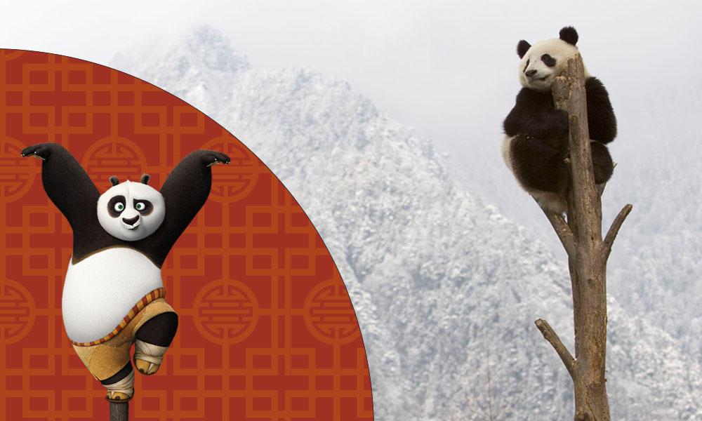 Po from Kung Fu Panda 3