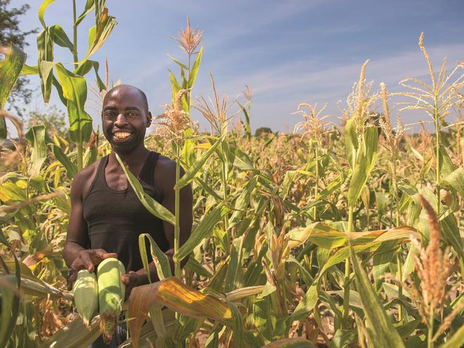 Farmer Sipalo Mubita poses with his abundant corn crop