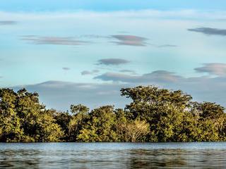 MKohut COLOMBIA Orinoco River-075