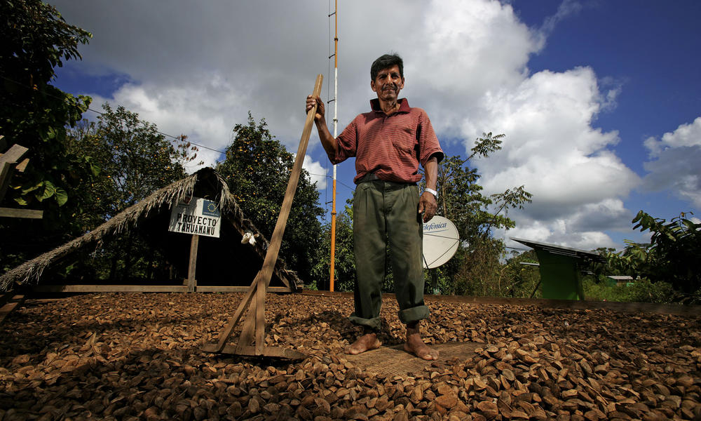 nut farmer in brazil