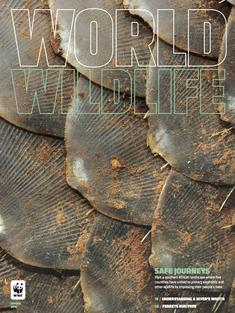 World Widlife Magazine Spring 2016 cover