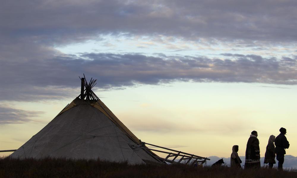 Nenets reindeer herders 235268