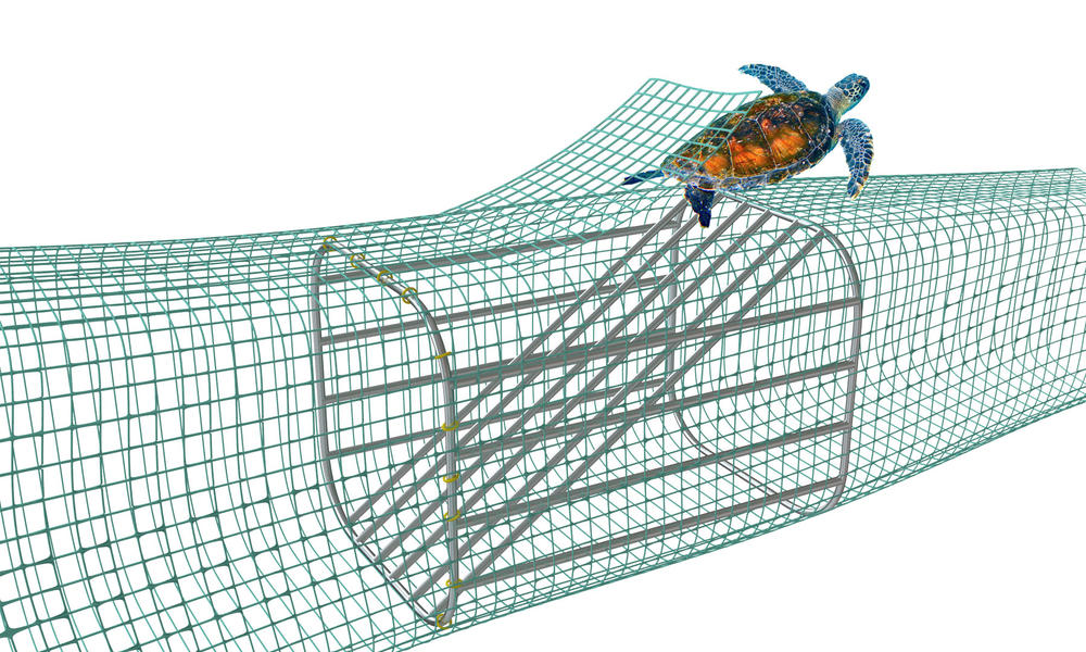 How a simple technology is saving turtles | Magazine