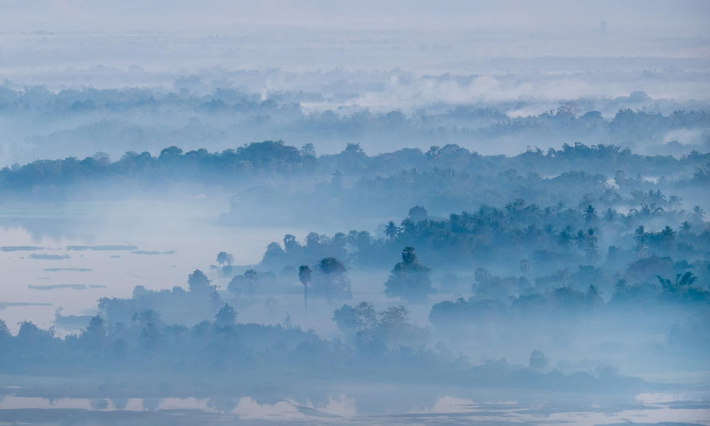 foggy forest in Myanmar