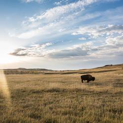 2016 06 fathersday ecard prairie