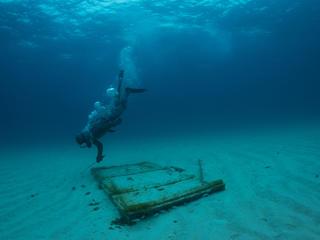 Lobster diver Nassau