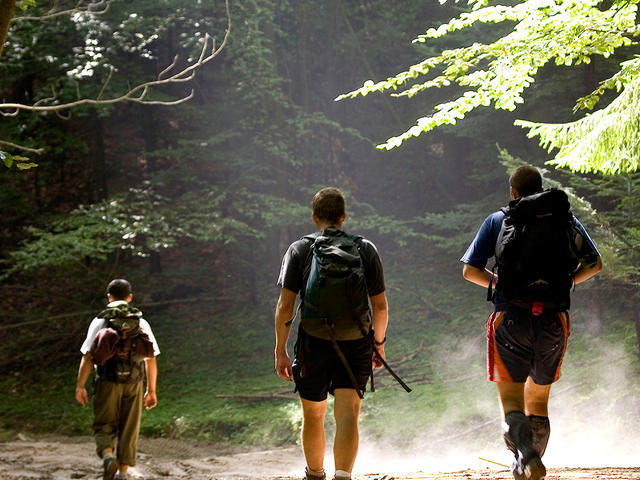 Hikers walking