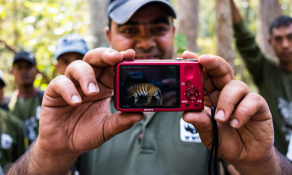 WWF Nepal project officer showing a photo of a tiger in the Terai Arc Landscape