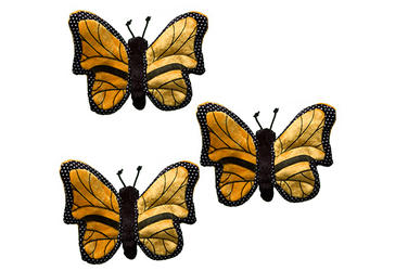 Protecting Monarch Butterflies and Their Forests | Stories | WWF
