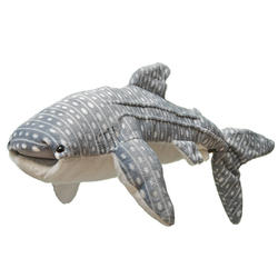 How to help whale shark