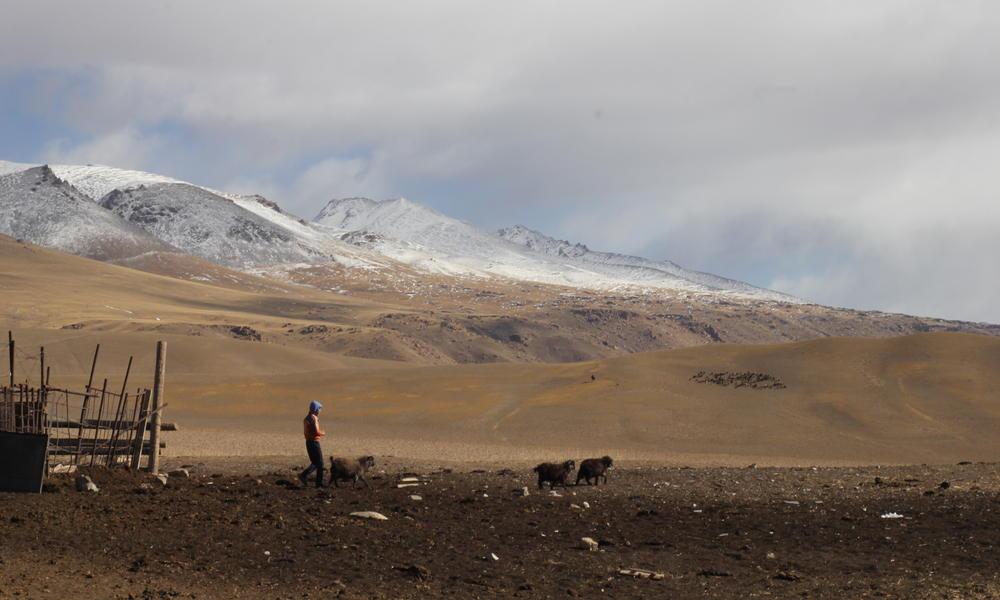 1 kyrgyz story main img 3654