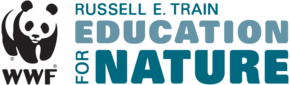New EFN Logo