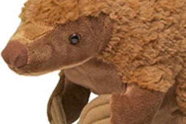 Pangolin plush