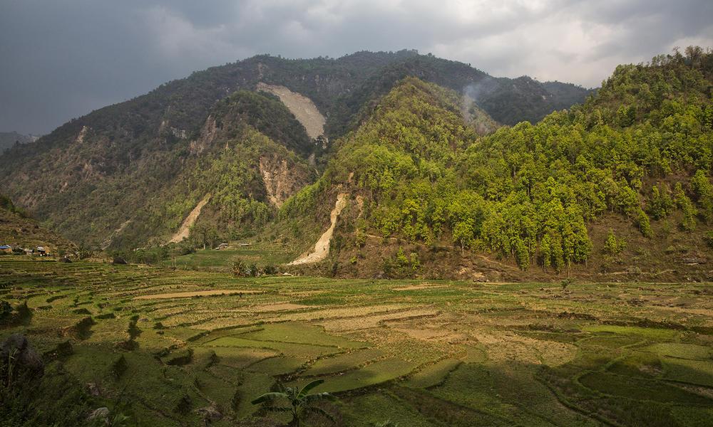 Wwf nepal gl6a6025