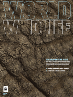 World Wildlife Magazine Winter 2016 cover